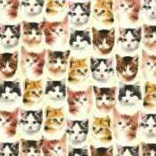 Thumbnail Image mtn-quilting-treasures-puppies-n-kittens-1.jpg